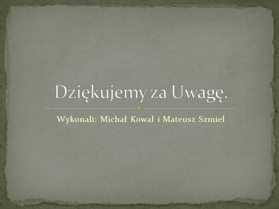 Wykonali: Michał Kowal i Mateusz Szmiel