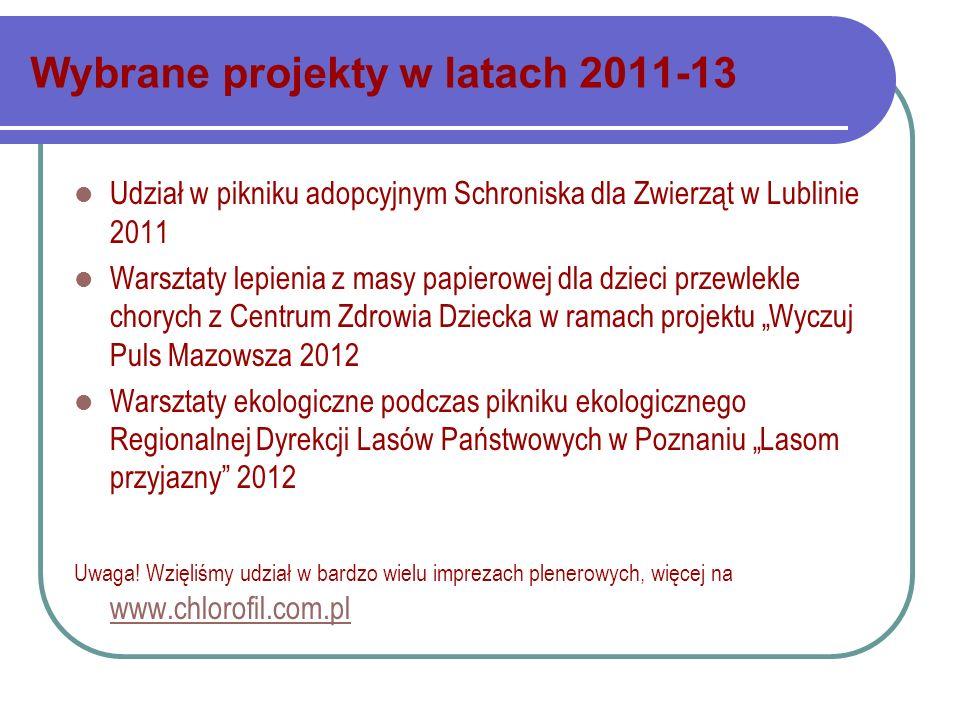 Wybrane projekty w latach 2011-13
