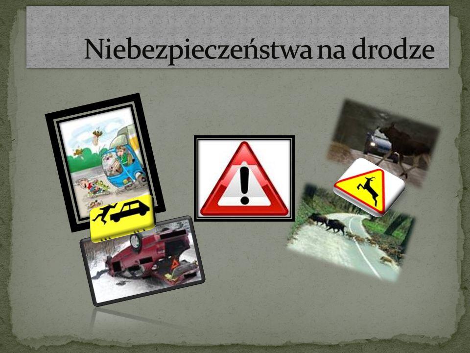 Niebezpieczeństwa na drodze