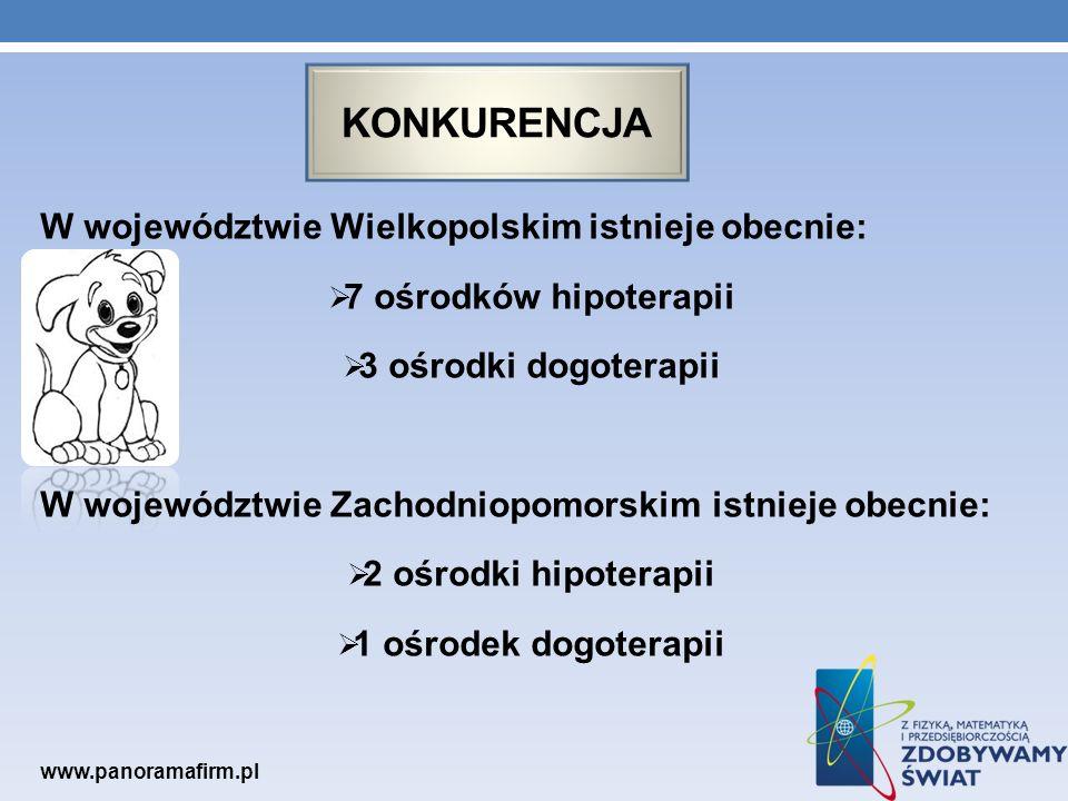 konkurencja W województwie Wielkopolskim istnieje obecnie: