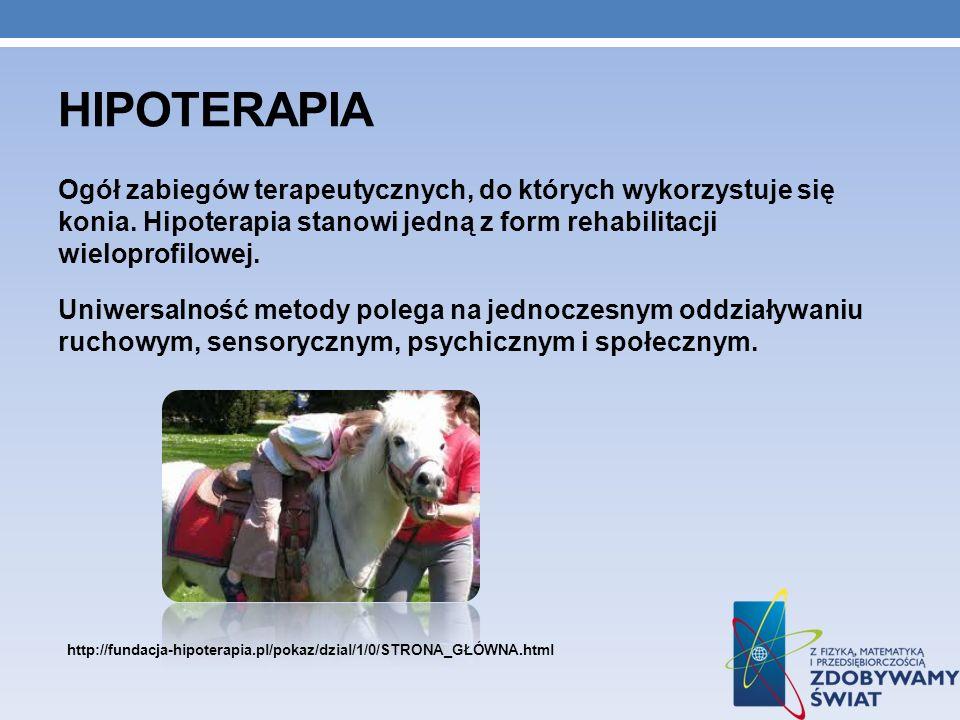 hipoterapia Ogół zabiegów terapeutycznych, do których wykorzystuje się konia. Hipoterapia stanowi jedną z form rehabilitacji wieloprofilowej.