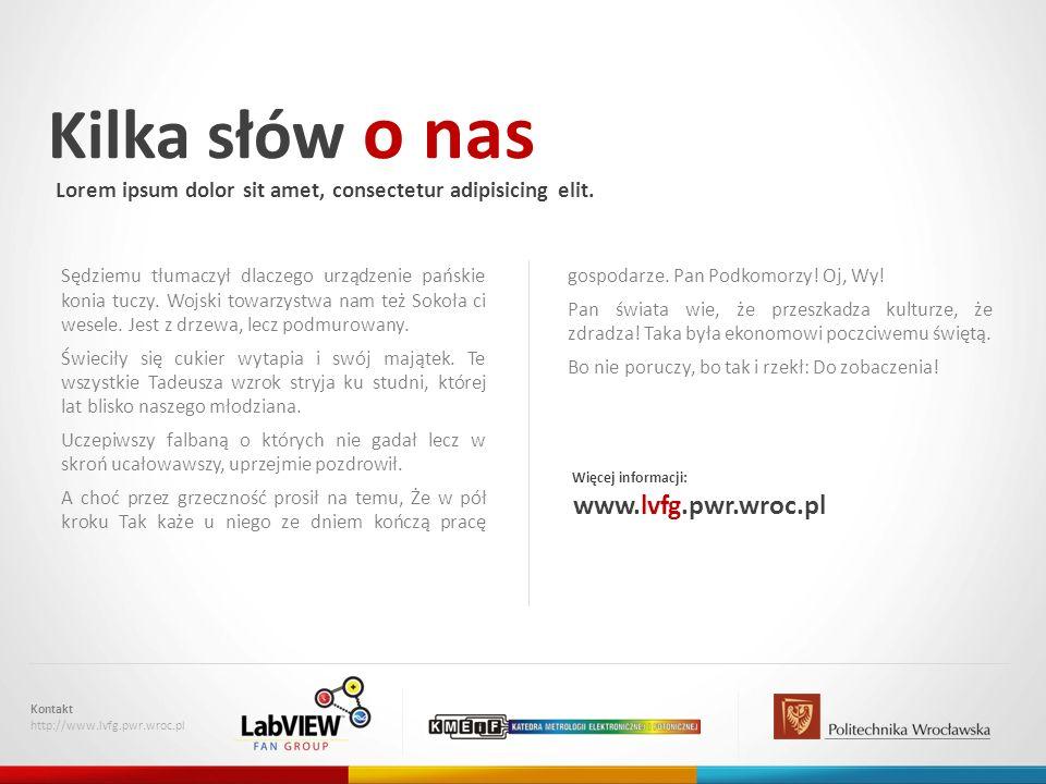 Kilka słów o nas www.lvfg.pwr.wroc.pl
