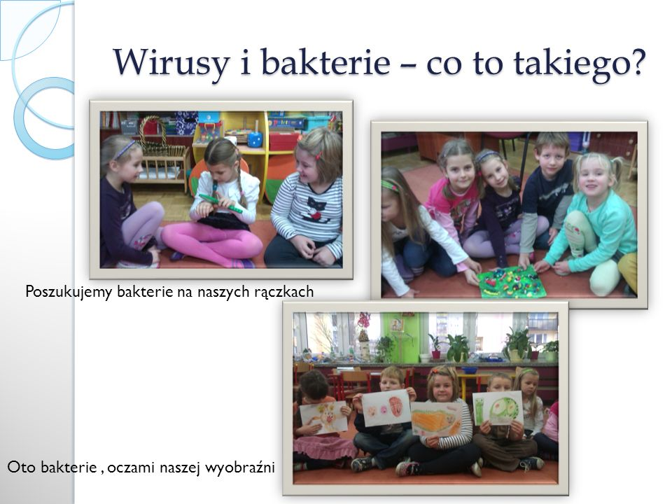 Wirusy i bakterie – co to takiego
