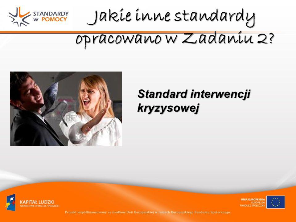Jakie inne standardy opracowano w Zadaniu 2