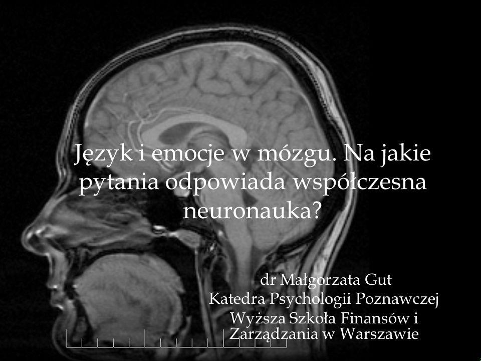 Język i emocje w mózgu. Na jakie pytania odpowiada współczesna neuronauka