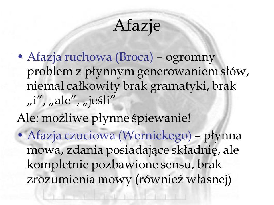 """Afazje Afazja ruchowa (Broca) – ogromny problem z płynnym generowaniem słów, niemal całkowity brak gramatyki, brak """"i , """"ale , """"jeśli"""