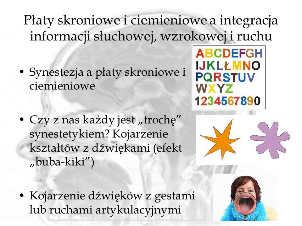 Płaty skroniowe i ciemieniowe a integracja informacji słuchowej, wzrokowej i ruchu