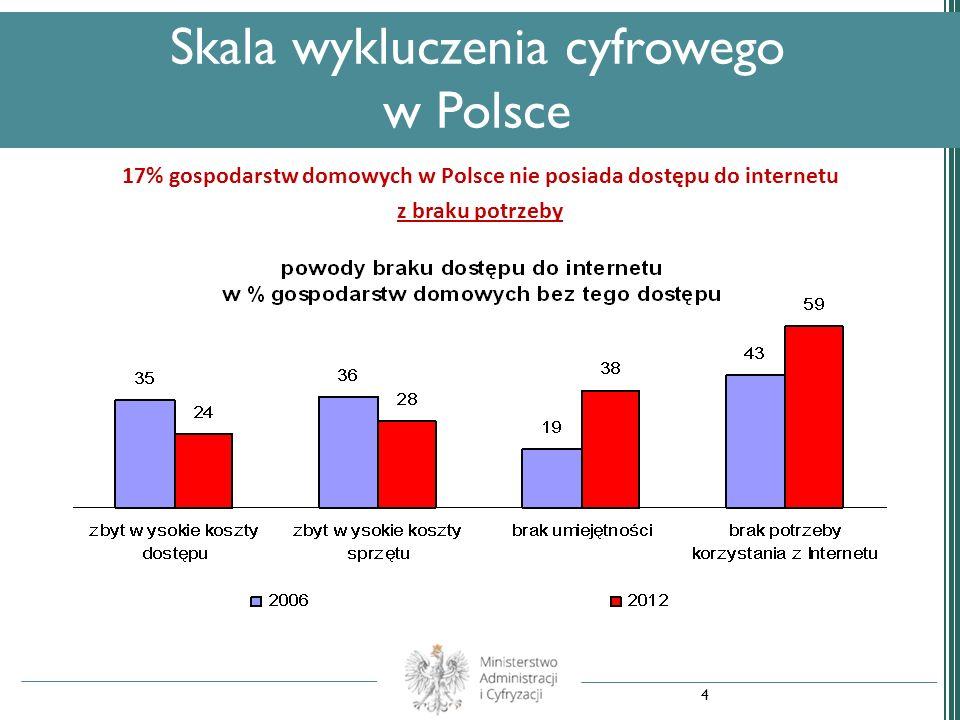 17% gospodarstw domowych w Polsce nie posiada dostępu do internetu