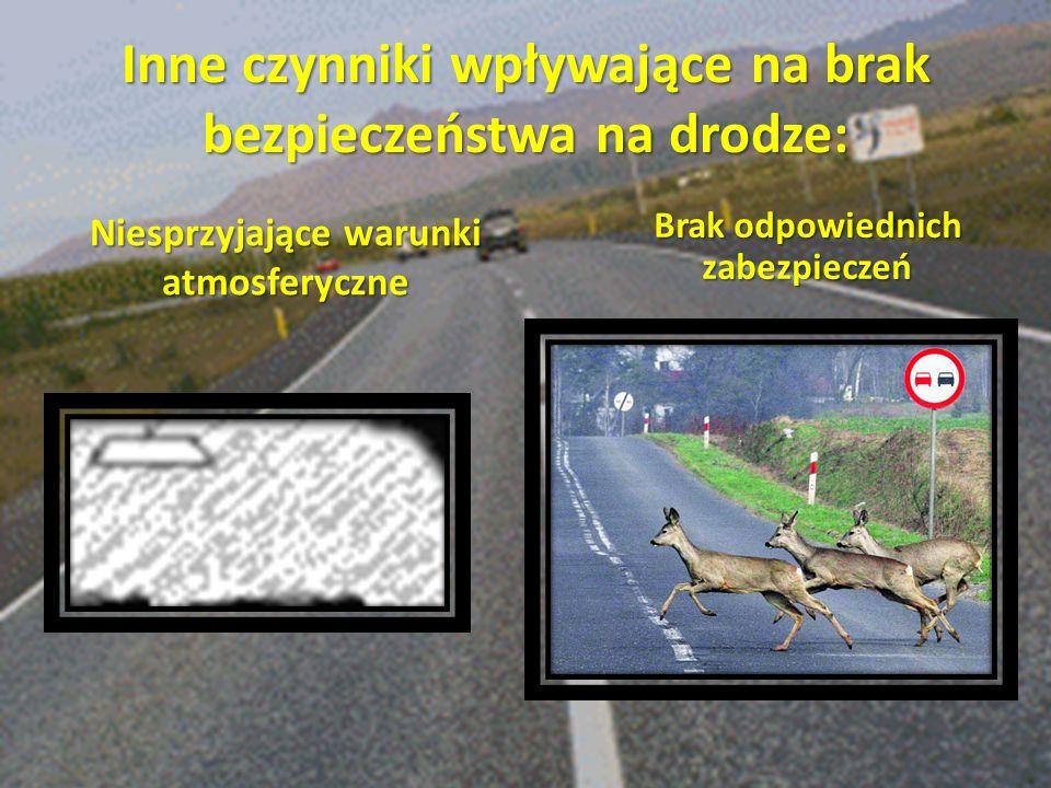 Inne czynniki wpływające na brak bezpieczeństwa na drodze: