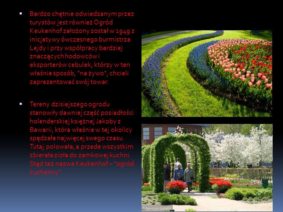 Bardzo chętnie odwiedzanym przez turystów jest również Ogród Keukenhof założony został w 1949 z inicjatywy ówczesnego burmistrza Lejdy i przy współpracy bardziej znaczących hodowców i eksporterów cebulek, którzy w ten właśnie sposób, na żywo , chcieli zaprezentować swój towar.