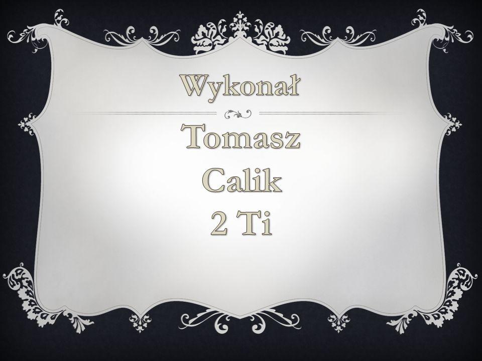 Wykonał Tomasz Calik 2 Ti