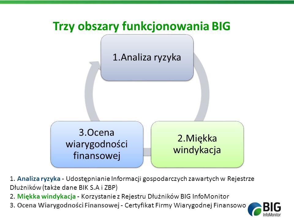 Trzy obszary funkcjonowania BIG