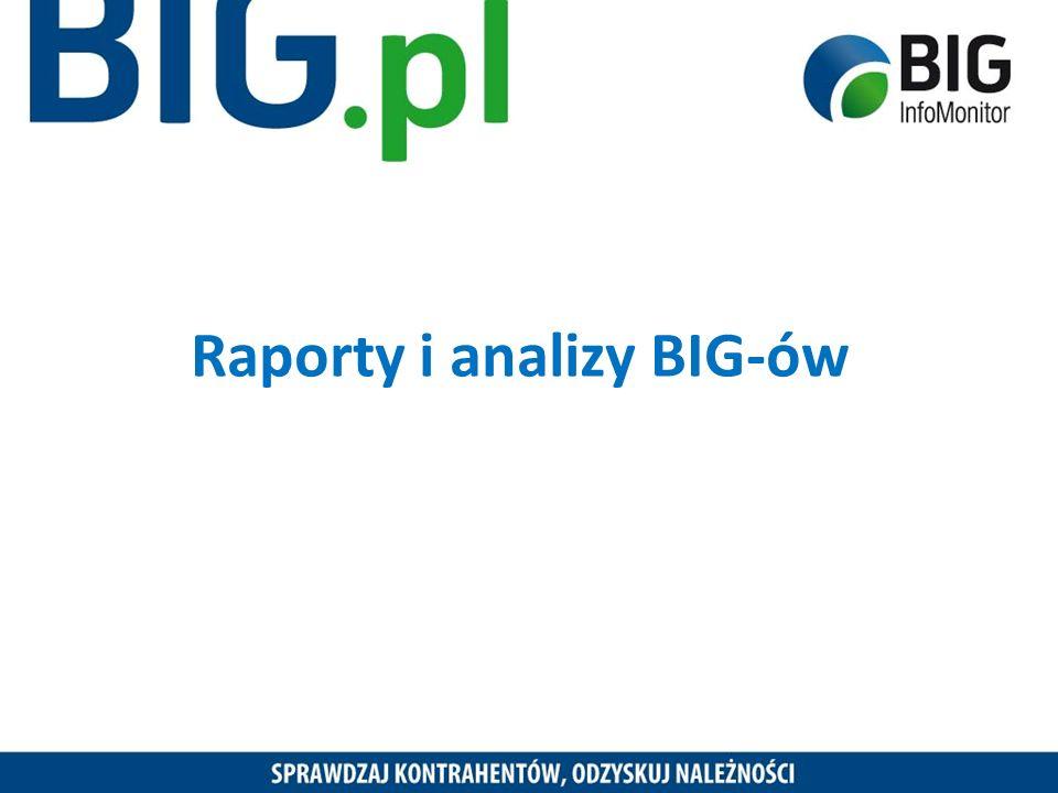 Raporty i analizy BIG-ów