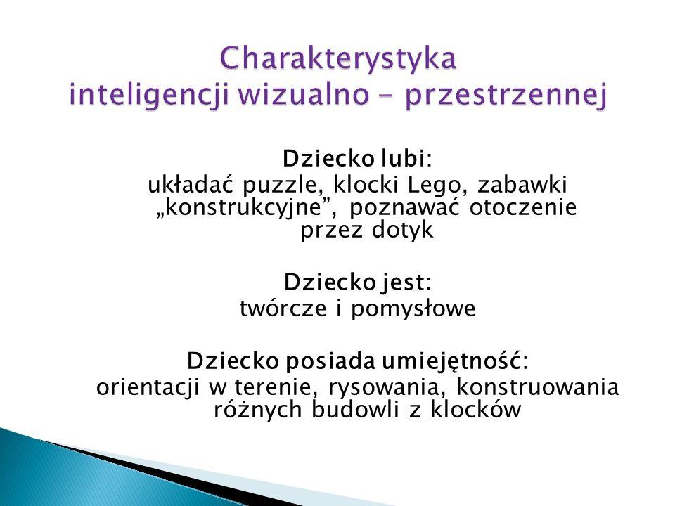 Charakterystyka inteligencji wizualno - przestrzennej