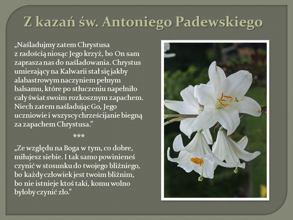 Z kazań św. Antoniego Padewskiego