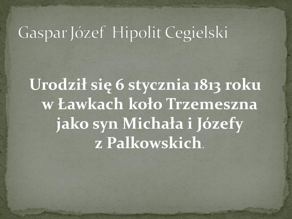 Gaspar Józef Hipolit Cegielski