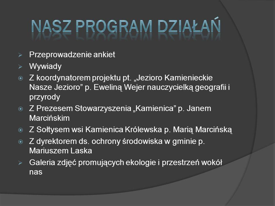 Nasz program działań Przeprowadzenie ankiet Wywiady