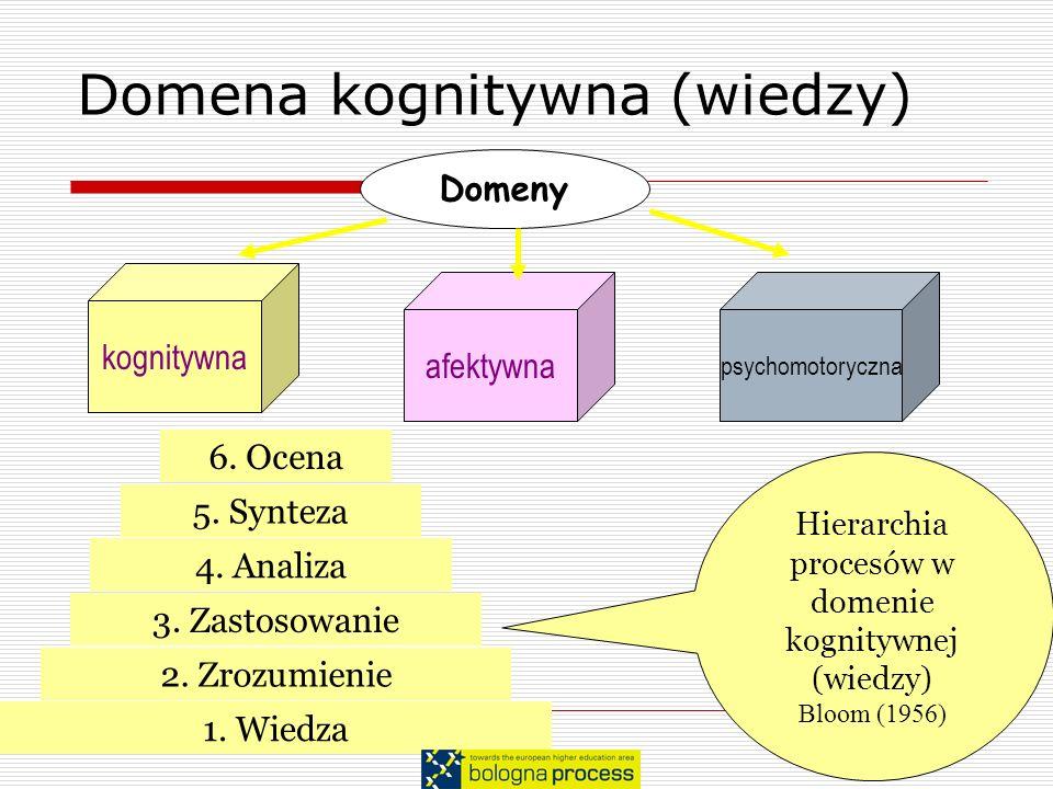 Domena kognitywna (wiedzy)