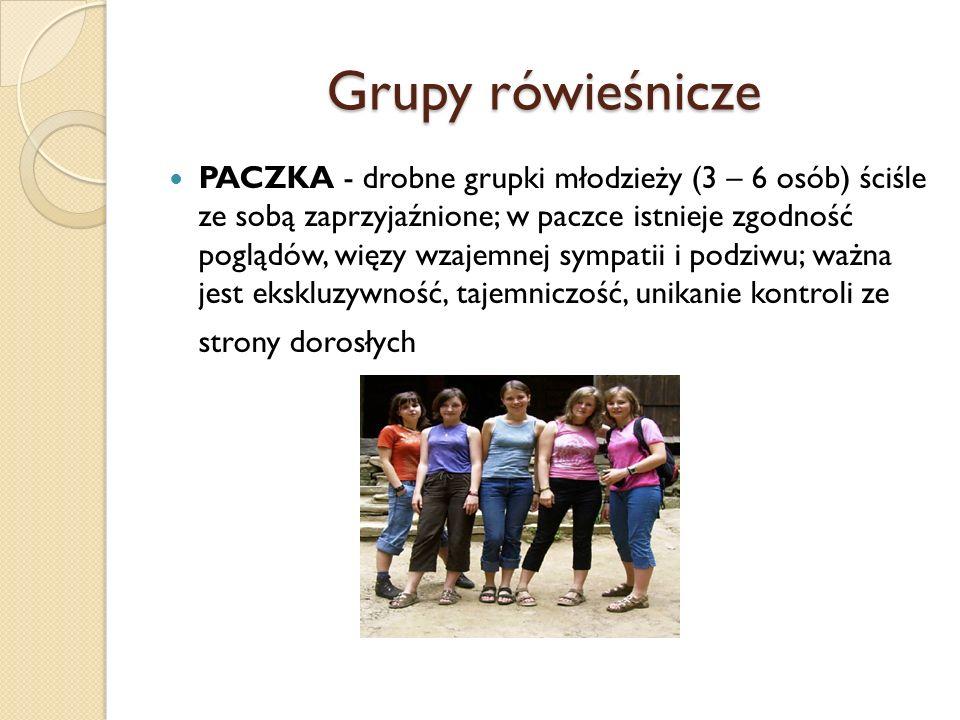 Grupy rówieśnicze