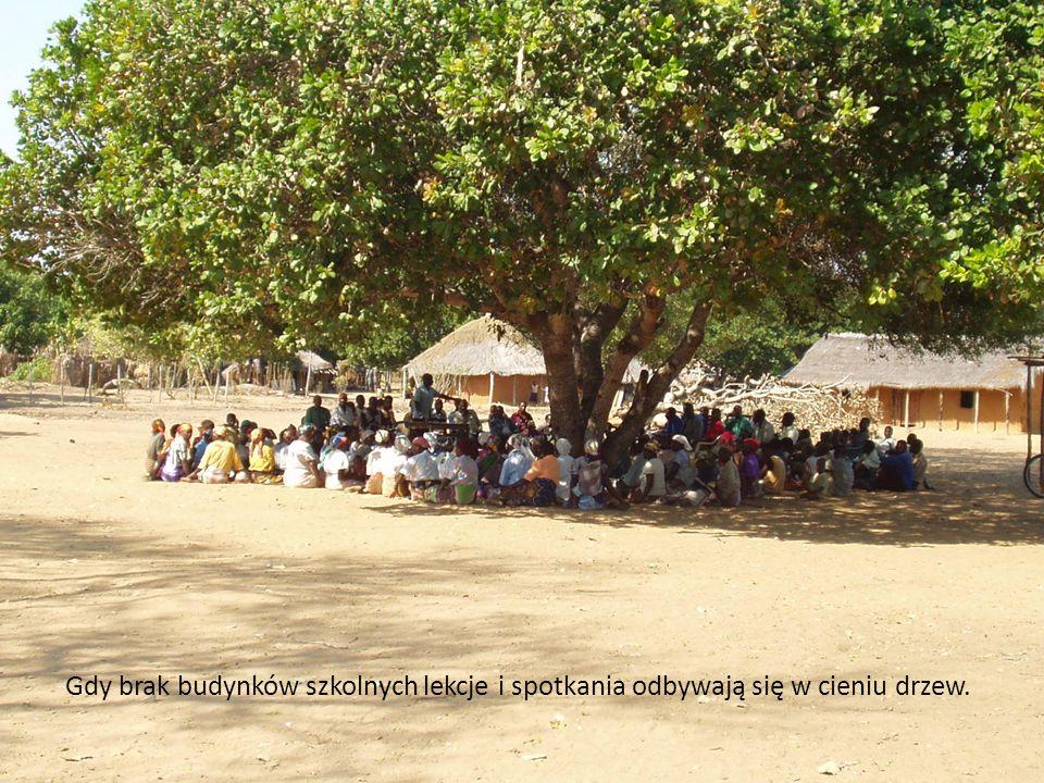 Gdy brak budynków szkolnych lekcje i spotkania odbywają się w cieniu drzew.