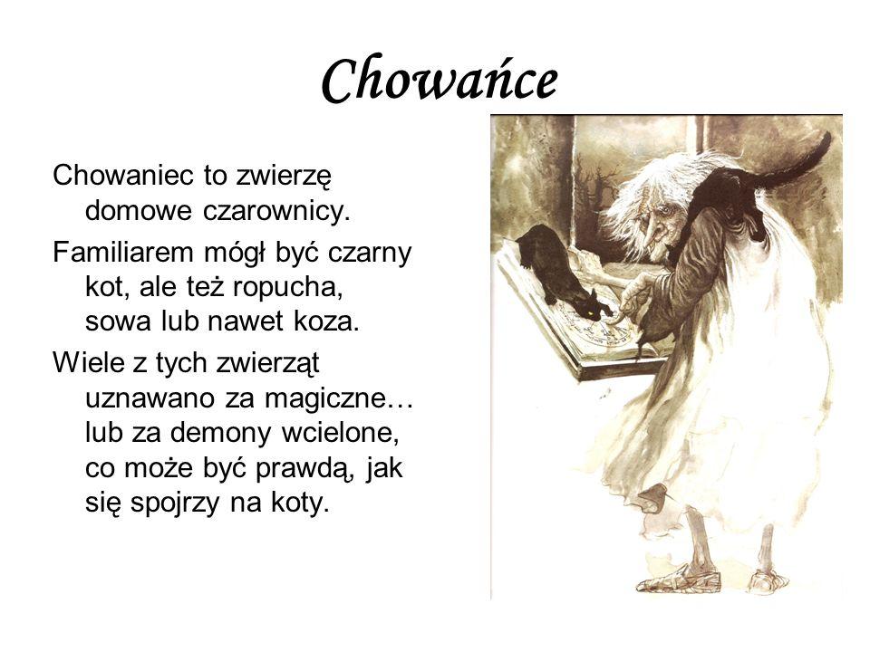 Chowańce Chowaniec to zwierzę domowe czarownicy.