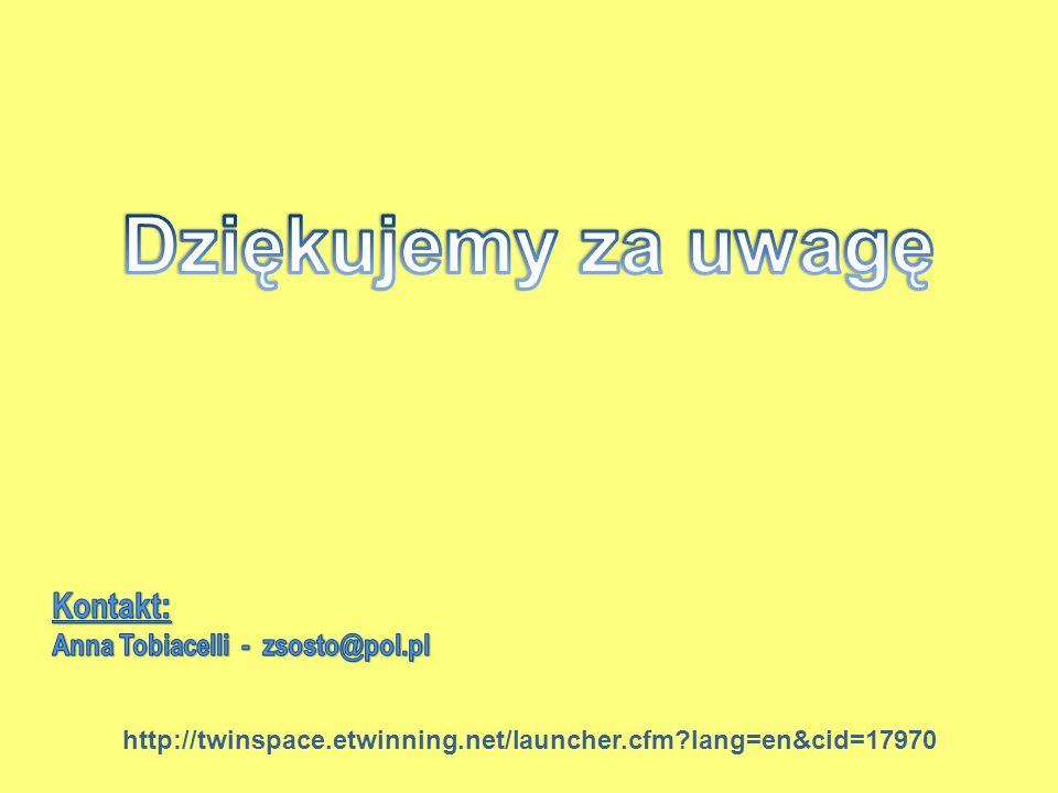 Dziękujemy za uwagę Kontakt: Anna Tobiacelli - zsosto@pol.pl