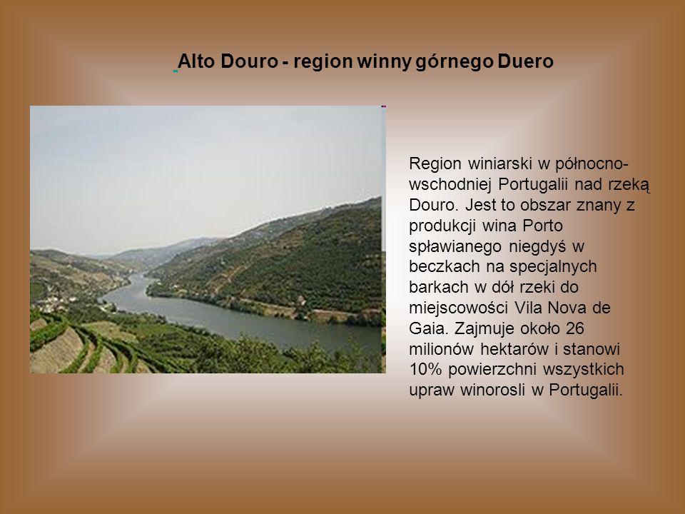 Alto Douro - region winny górnego Duero