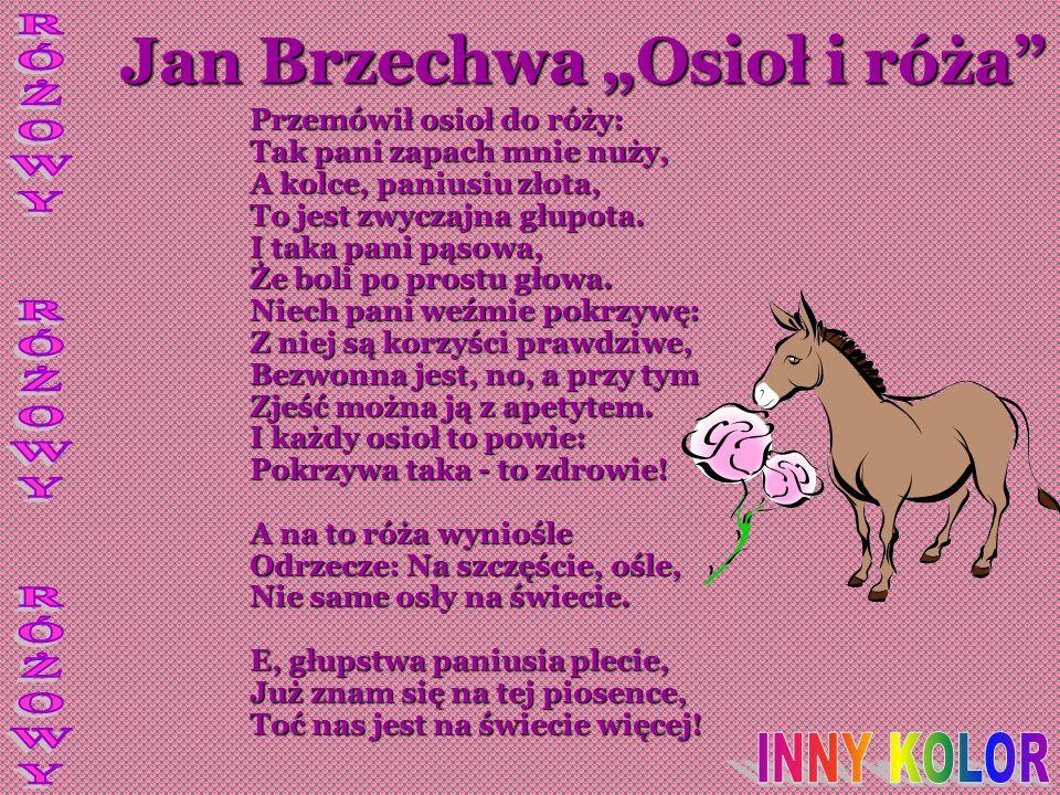"""Jan Brzechwa """"Osioł i róża"""
