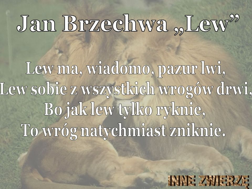 """Jan Brzechwa """"Lew Lew ma, wiadomo, pazur lwi,"""