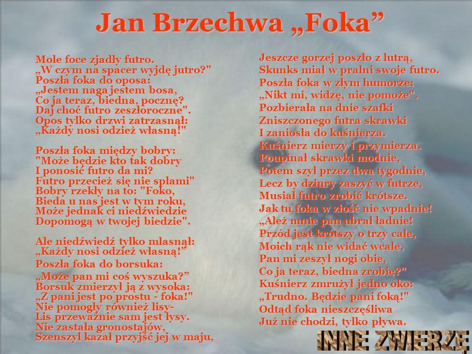 """Foka Jan Brzechwa """"Foka INNE ZWIERZĘ"""