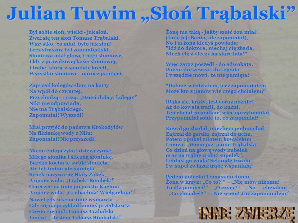 "Julian Tuwim ""Słoń Trąbalski"