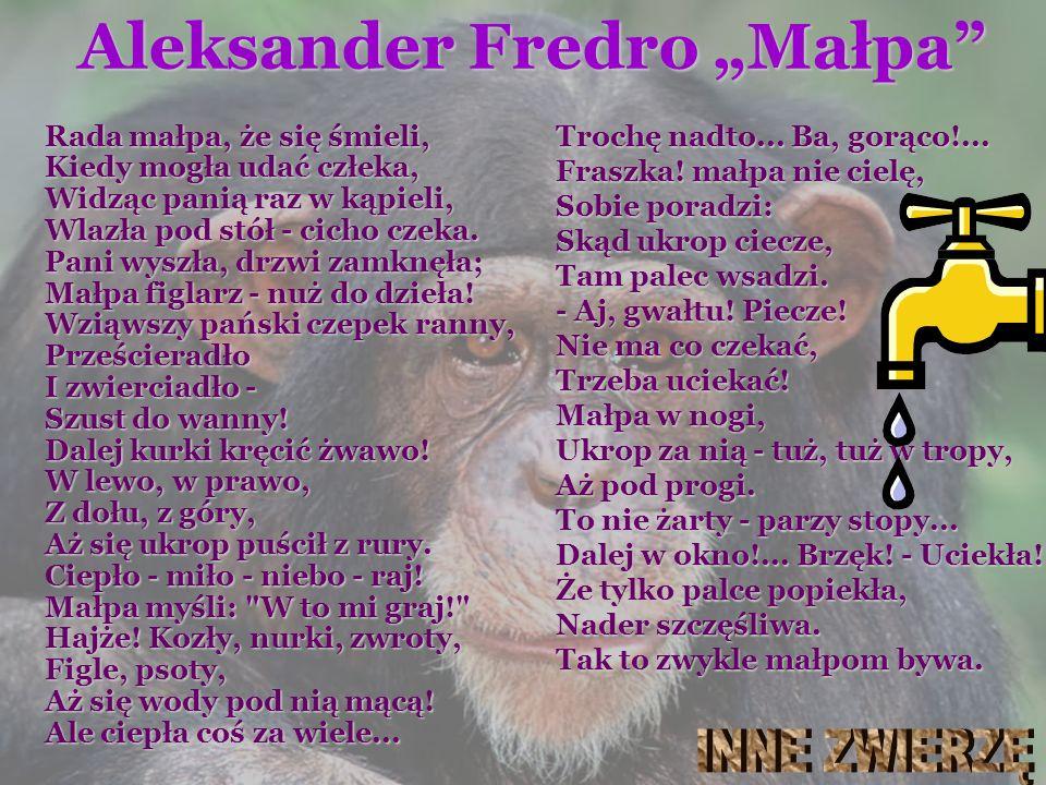 """Aleksander Fredro """"Małpa"""