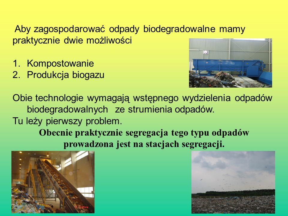 Aby zagospodarować odpady biodegradowalne mamy praktycznie dwie możliwości