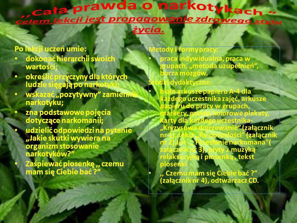,,Cała prawda o narkotykach Celem lekcji jest propagowanie zdrowego stylu życia.