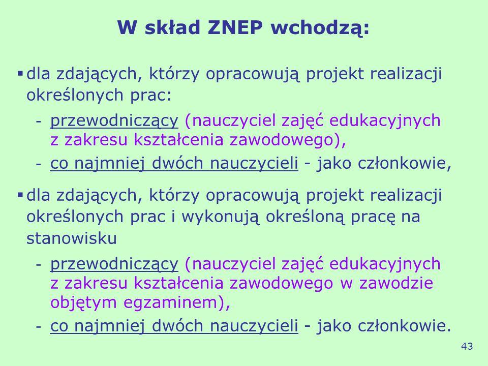 W skład ZNEP wchodzą: dla zdających, którzy opracowują projekt realizacji określonych prac: