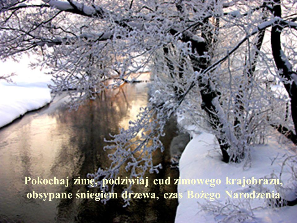 Pokochaj zimę, podziwiaj cud zimowego krajobrazu, obsypane śniegiem drzewa, czas Bożego Narodzenia