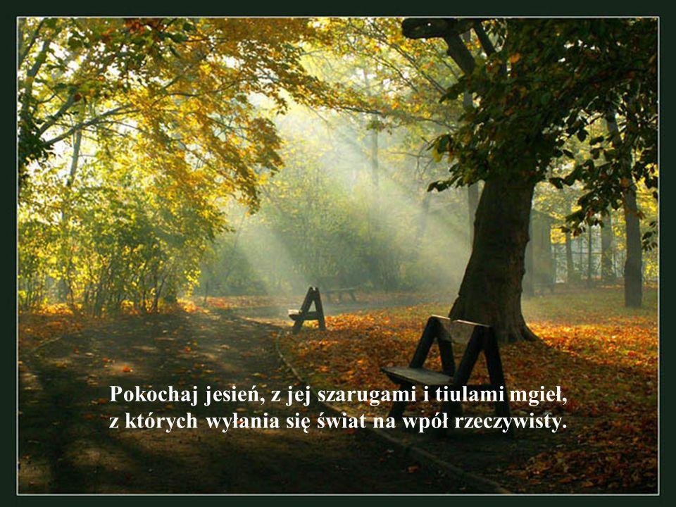 Pokochaj jesień, z jej szarugami i tiulami mgieł, z których wyłania się świat na wpół rzeczywisty.