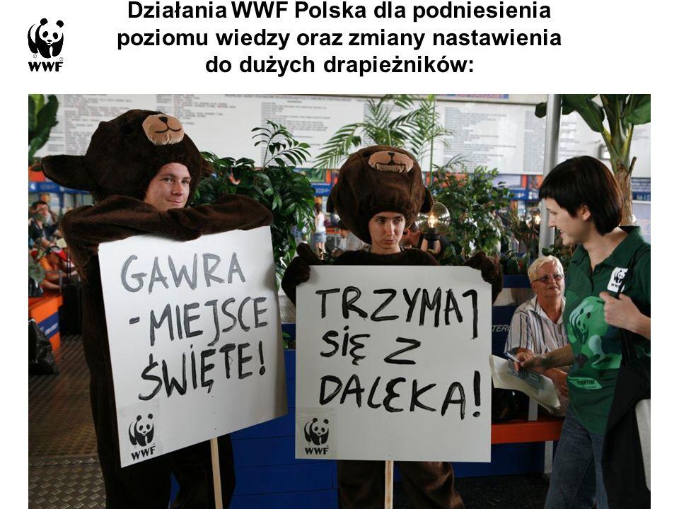 Działania WWF Polska dla podniesienia poziomu wiedzy oraz zmiany nastawienia do dużych drapieżników: