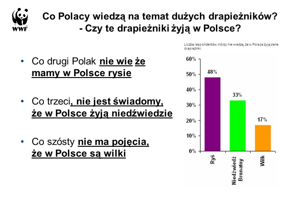 Co drugi Polak nie wie że mamy w Polsce rysie