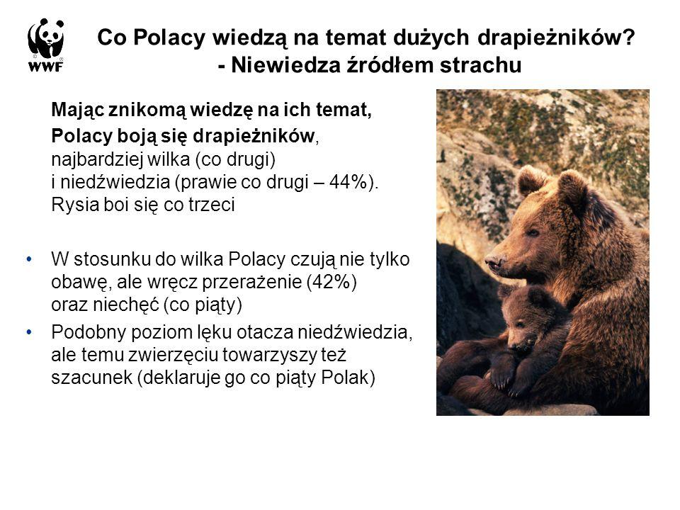 Co Polacy wiedzą na temat dużych drapieżników