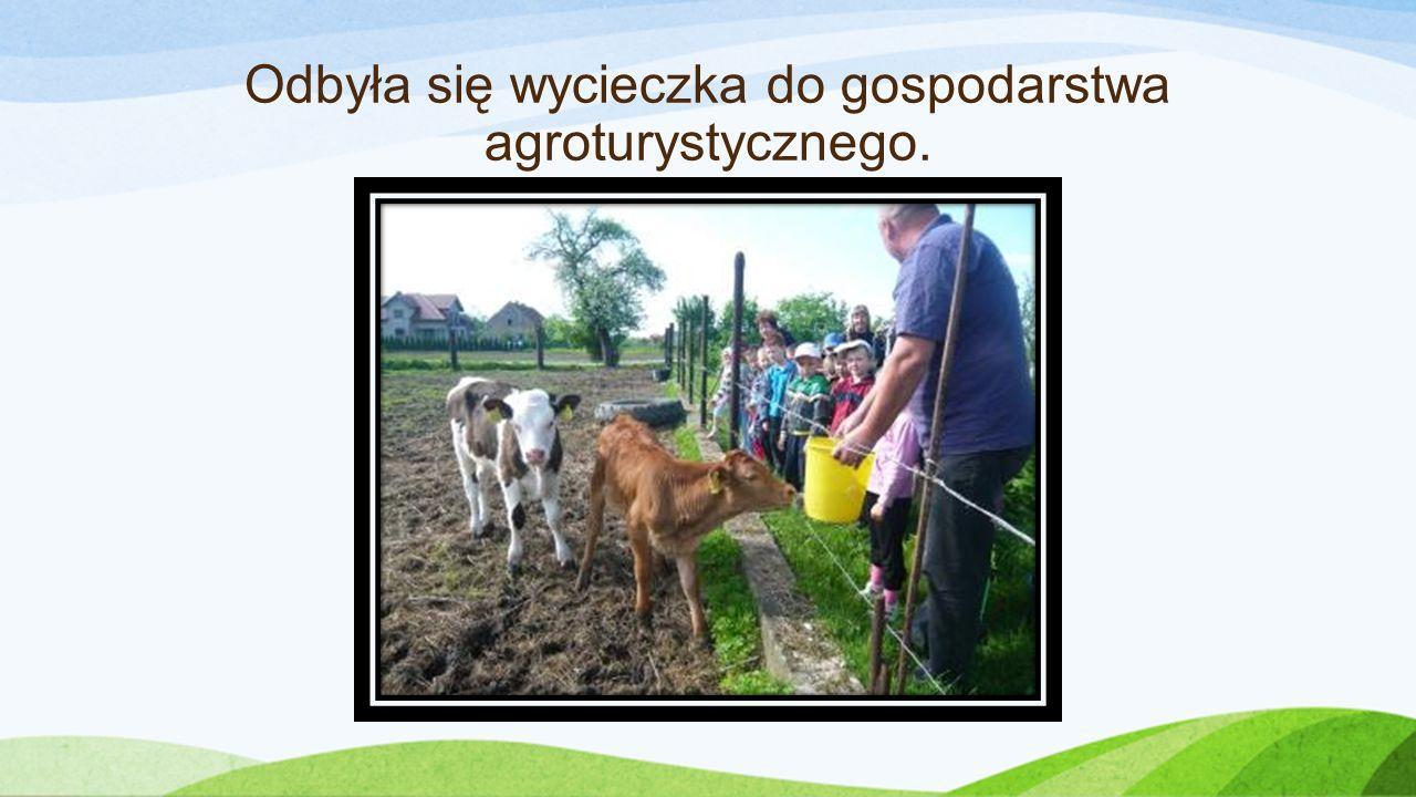 Odbyła się wycieczka do gospodarstwa agroturystycznego.