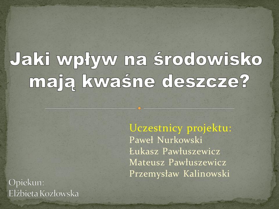 Opiekun: Elżbieta Kozłowska