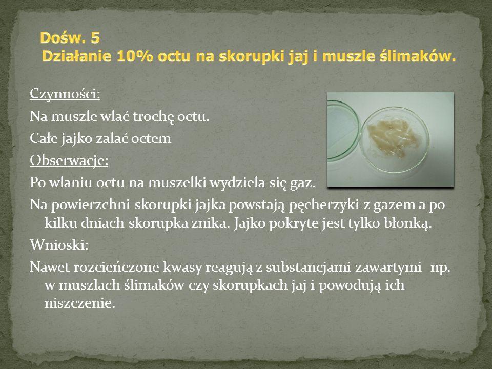 Działanie 10% octu na skorupki jaj i muszle ślimaków.