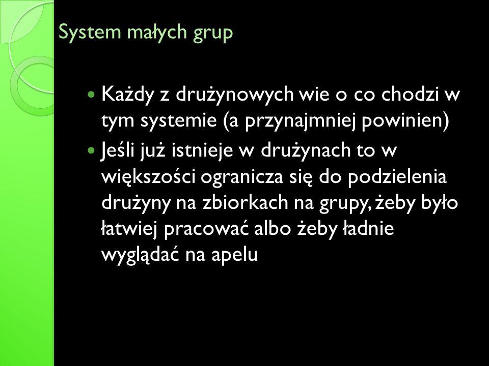 System małych grup Każdy z drużynowych wie o co chodzi w tym systemie (a przynajmniej powinien)