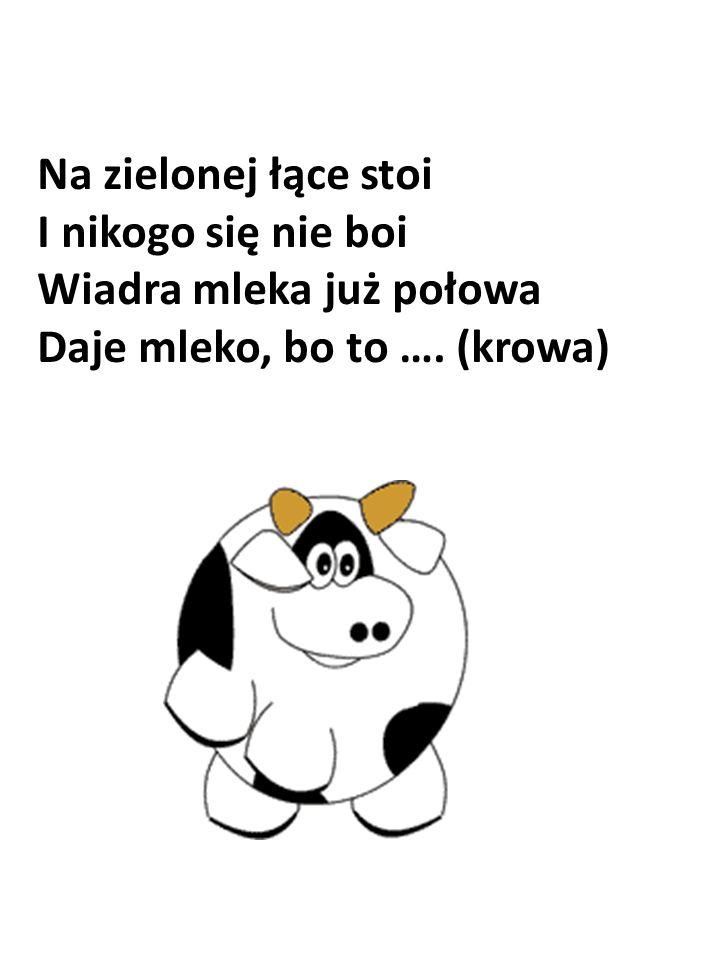 Na zielonej łące stoi I nikogo się nie boi Wiadra mleka już połowa Daje mleko, bo to …. (krowa)