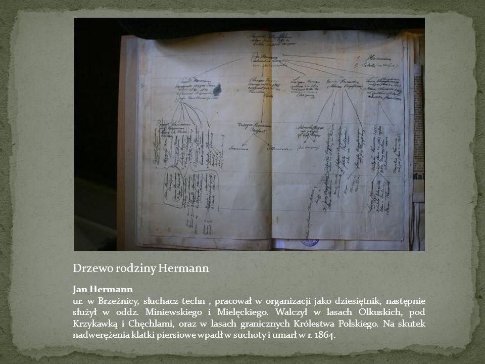 Drzewo rodziny Hermann