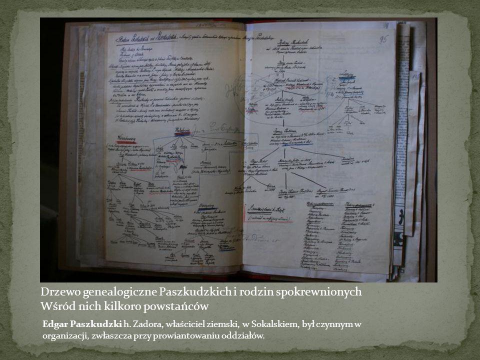 Drzewo genealogiczne Paszkudzkich i rodzin spokrewnionych