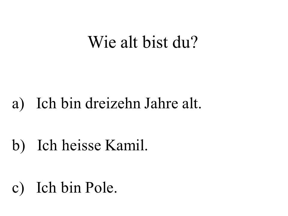 a) Ich bin dreizehn Jahre alt. b) Ich heisse Kamil. c) Ich bin Pole.