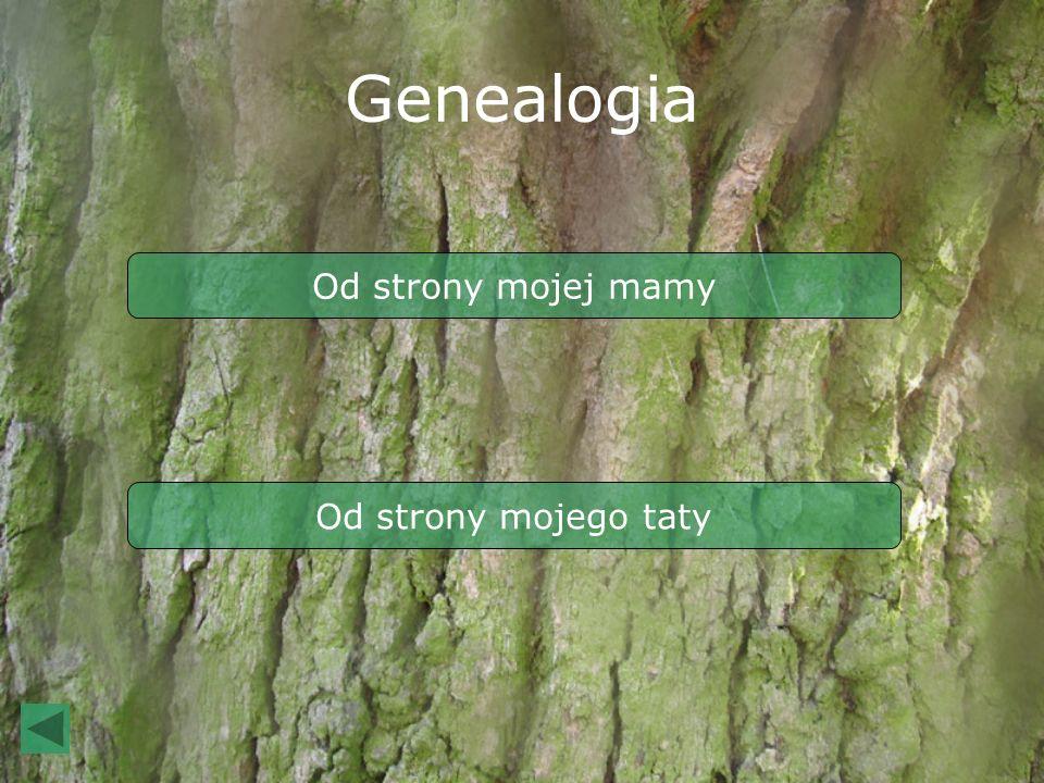 Genealogia Od strony mojej mamy Od strony mojego taty