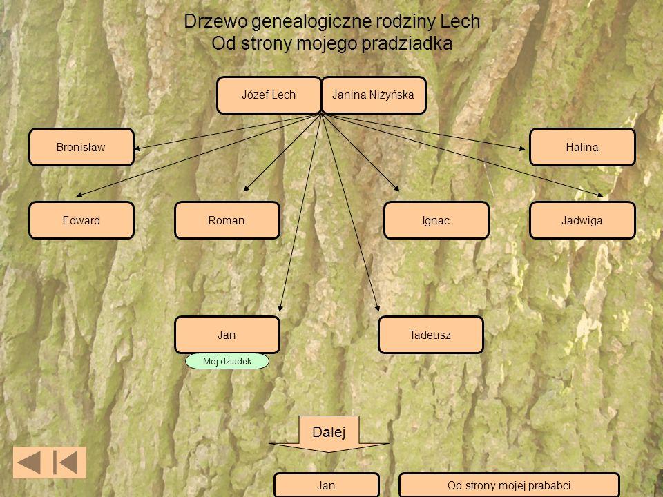 Drzewo genealogiczne rodziny Lech Od strony mojego pradziadka